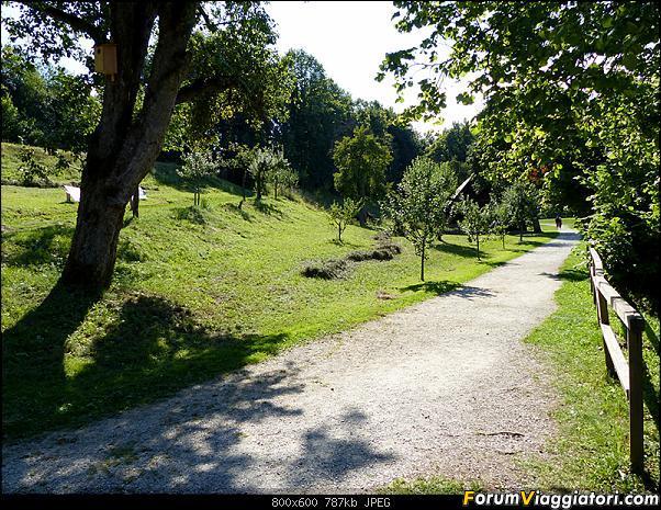 Slovenia, polmone verde d'Europa-p1800964.jpg