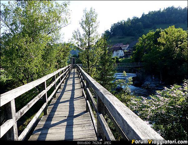 Slovenia, polmone verde d'Europa-p1810029.jpg