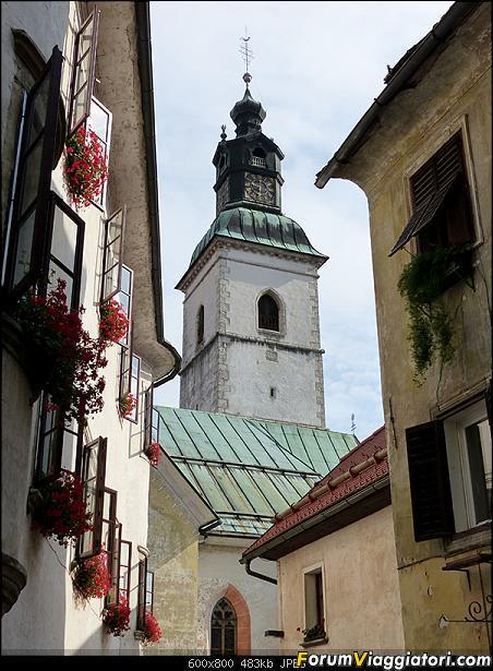 Slovenia, polmone verde d'Europa-p1810211.jpg