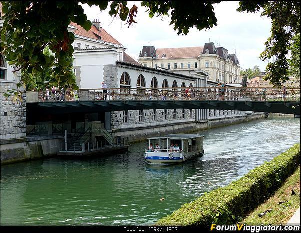Slovenia, polmone verde d'Europa-p1810388.jpg