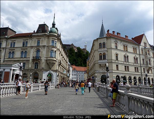 Slovenia, polmone verde d'Europa-p1810450.jpg