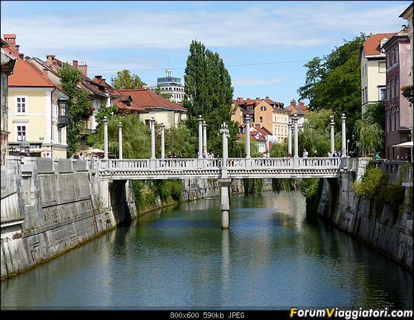 Slovenia, polmone verde d'Europa-p1810792.jpg