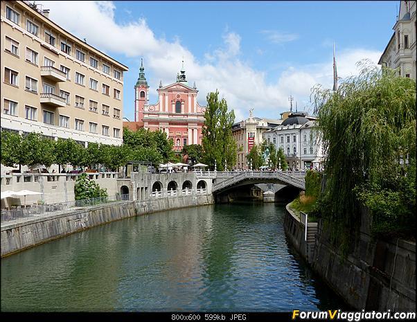 Slovenia, polmone verde d'Europa-p1810876.jpg