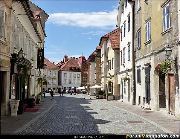 Slovenia, polmone verde d'Europa-p1820076.jpg