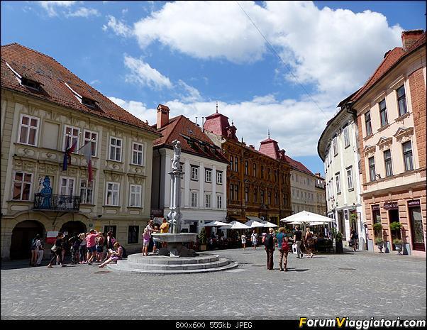 Slovenia, polmone verde d'Europa-p1820082.jpg
