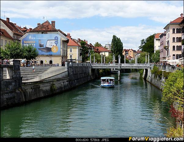 Slovenia, polmone verde d'Europa-p1820087.jpg