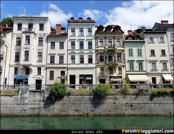 Slovenia, polmone verde d'Europa-p1820101.jpg