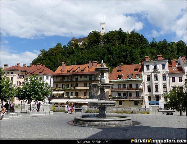Slovenia, polmone verde d'Europa-p1820106.jpg