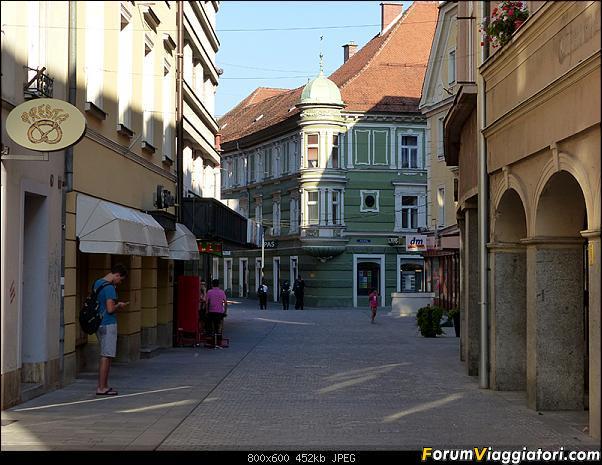 Slovenia, polmone verde d'Europa-p1820824.jpg