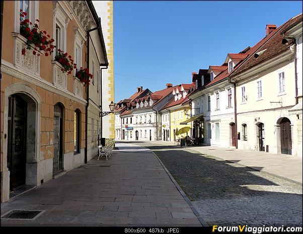Slovenia, polmone verde d'Europa-p1820941.jpg