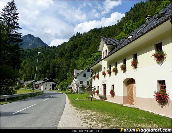 Slovenia, polmone verde d'Europa-p1830642.jpg