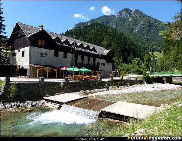 Slovenia, polmone verde d'Europa-p1830058.jpg