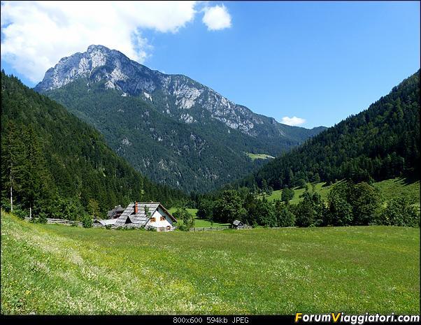 Slovenia, polmone verde d'Europa-p1830060.jpg
