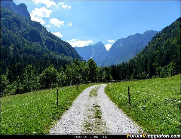 Slovenia, polmone verde d'Europa-p1830065.jpg