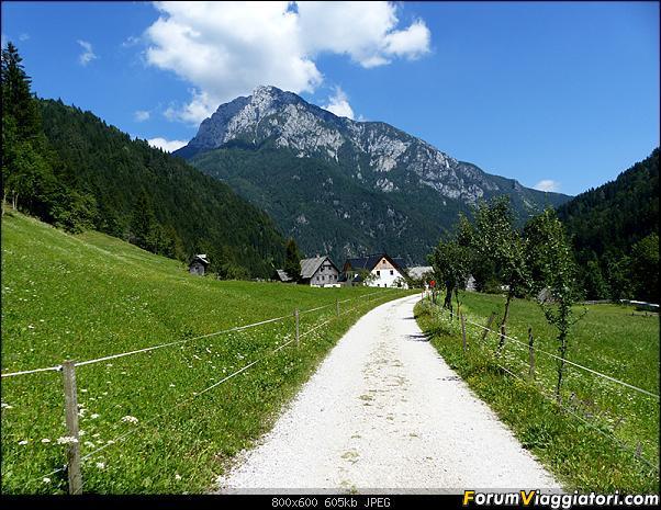 Slovenia, polmone verde d'Europa-p1830071.jpg