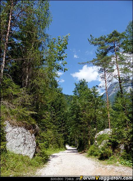 Slovenia, polmone verde d'Europa-p1830077.jpg