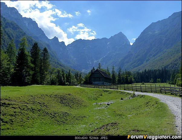 Slovenia, polmone verde d'Europa-p1830097.jpg