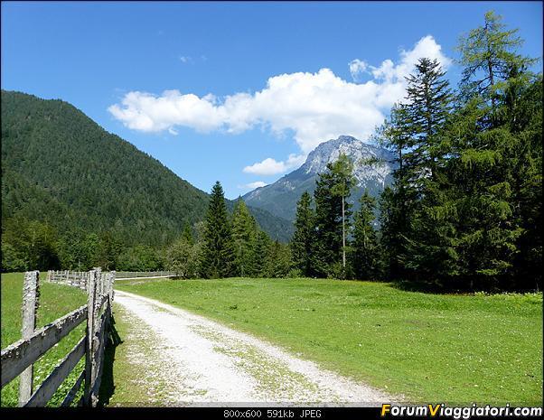 Slovenia, polmone verde d'Europa-p1830099.jpg
