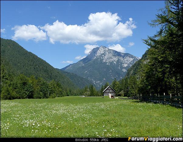 Slovenia, polmone verde d'Europa-p1830114.jpg