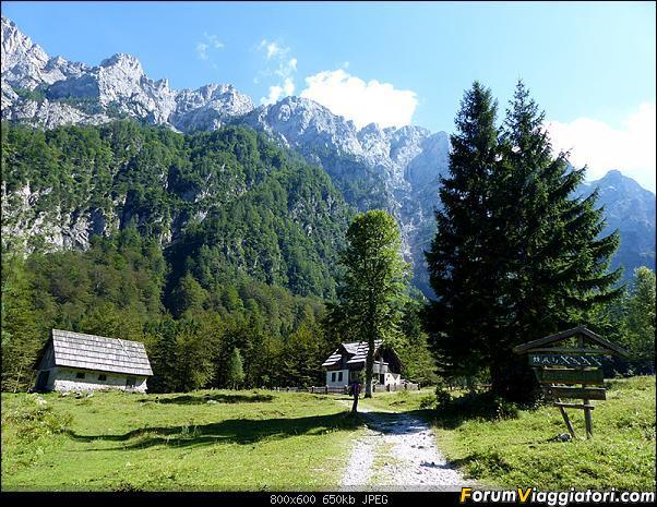 Slovenia, polmone verde d'Europa-p1830133.jpg