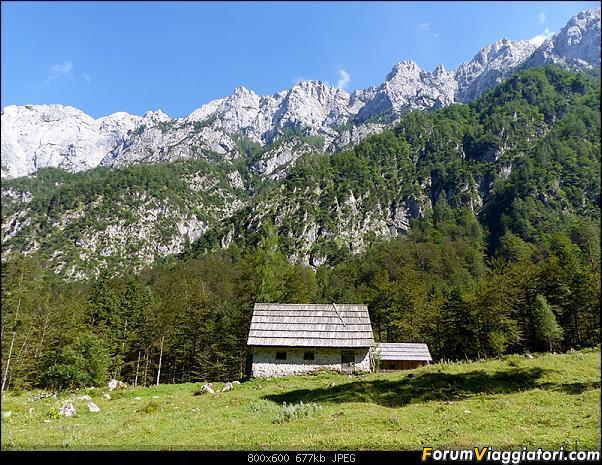 Slovenia, polmone verde d'Europa-p1830136.jpg