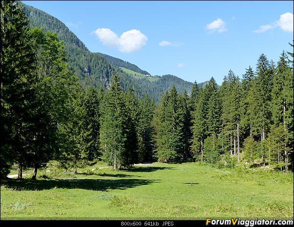 Slovenia, polmone verde d'Europa-p1830155.jpg