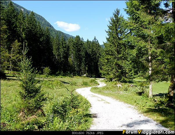 Slovenia, polmone verde d'Europa-p1830158.jpg